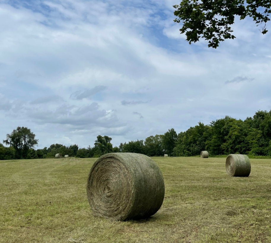 new game for exercise and skill....dodging hay bales